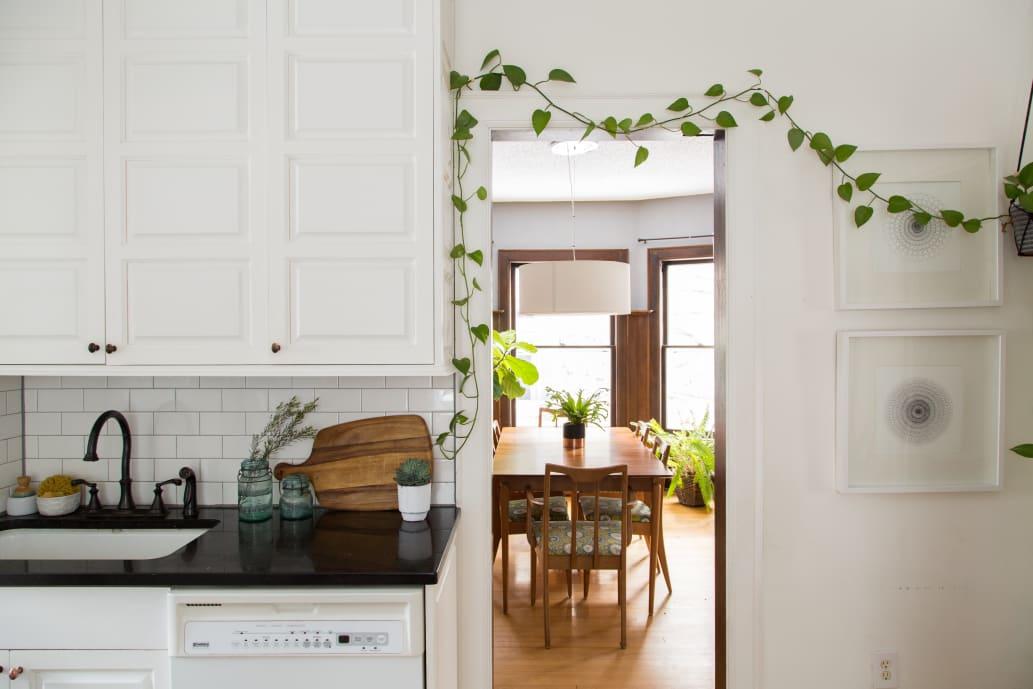 Lezioni di Giardinaggio – Garden Zanet