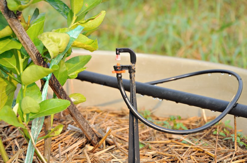 Come irrigare l 39 orto lezioni di giardinaggio garden zanet for Irrigazione a goccia per pomodori